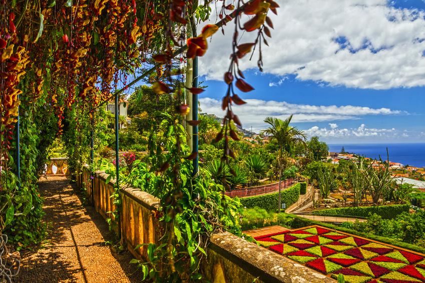 Reisetrends 2018: Madeira