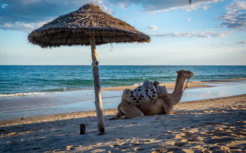 Tunesien Reisen feiern ein großes Comeback