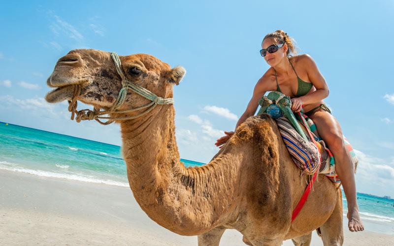 Tunesien Urlaub ist der Renner 2018