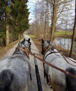 Kutzfahrt bei der Aldiana Inforeise