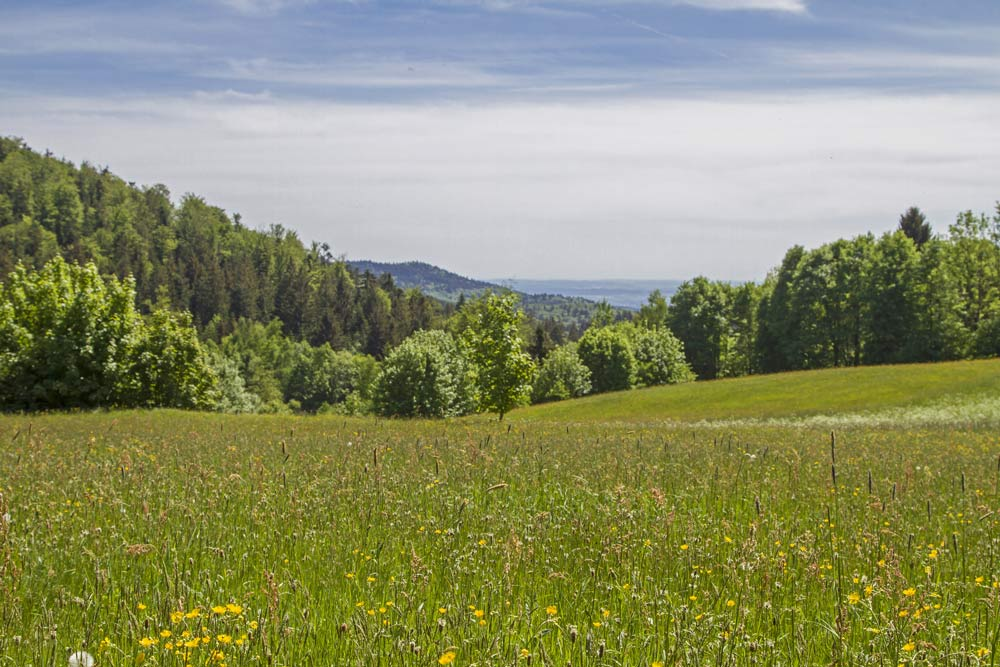 Wohnen und Arbeiten im Landkreis Deggendorf