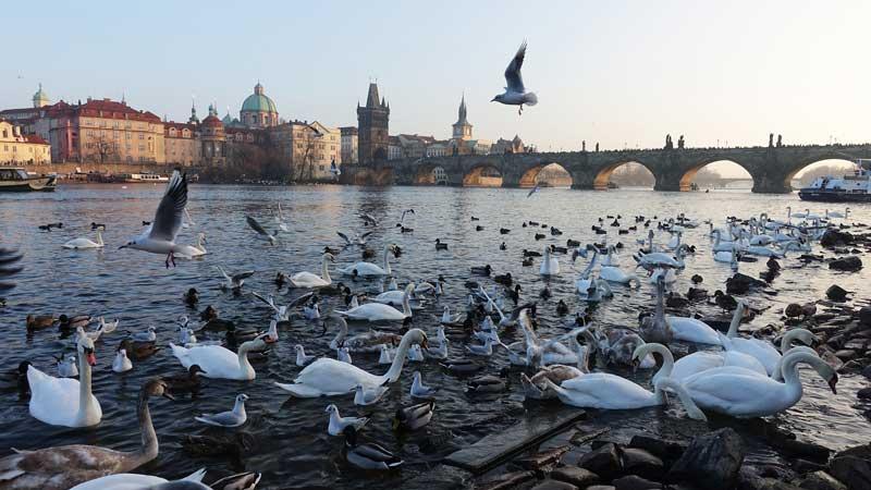 Prag im Herbst: ideal für eine Städtereise